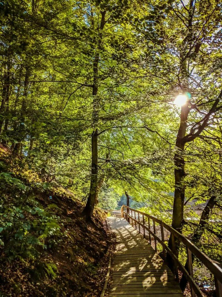 BREATHTAKING NATURE SPOTS IN SKANE, SWEDEN 68
