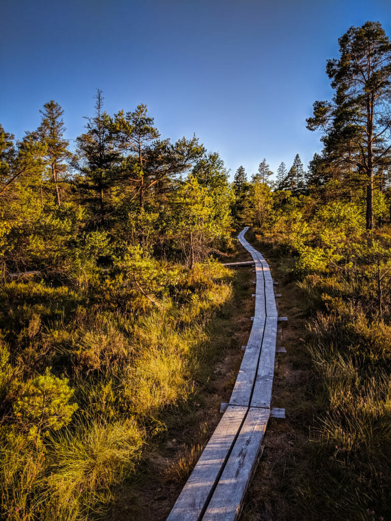BREATHTAKING NATURE SPOTS IN SKANE, SWEDEN 69