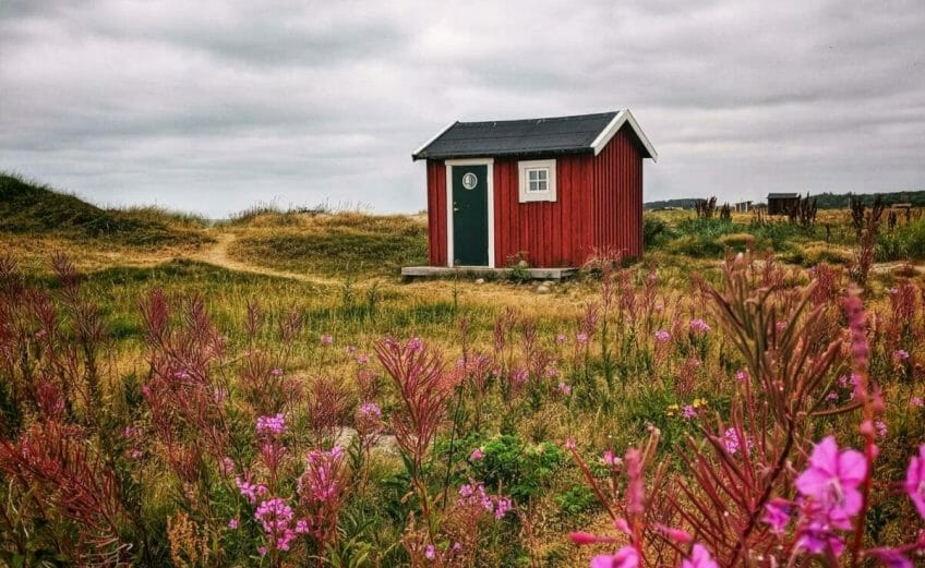 A PHOTO LOVERS GUIDE TO SKÅNE, SWEDEN 4