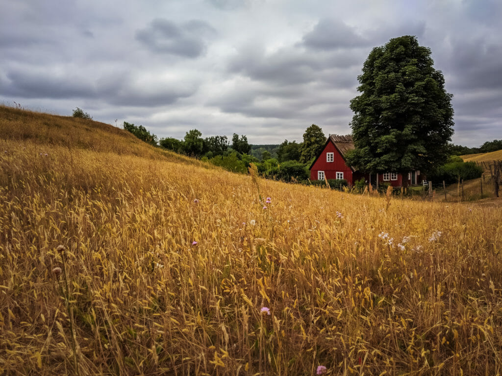 A PHOTO LOVERS GUIDE TO ÖSTERLEN IN SOUTHERN SWEDEN 4