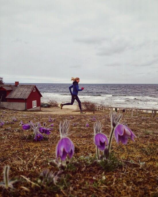 Österlen Spring Trail - Blümchen