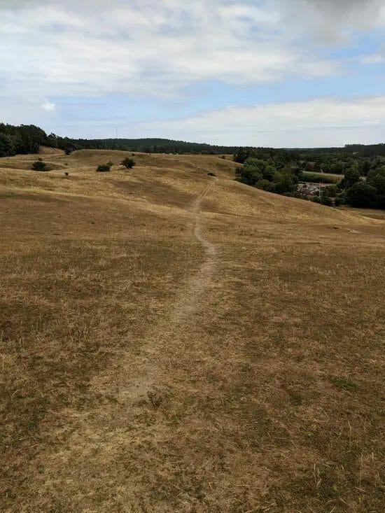 Österlen Spring Trail - Strecke5
