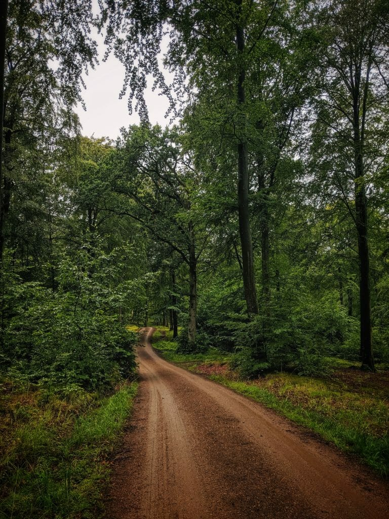 Aktivurlaub Dänemark-Radweg