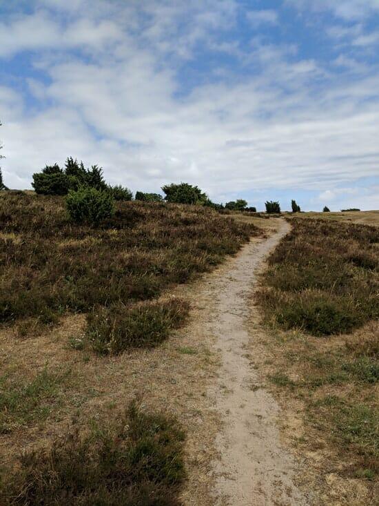 Österlen Spring Trail - Strecke