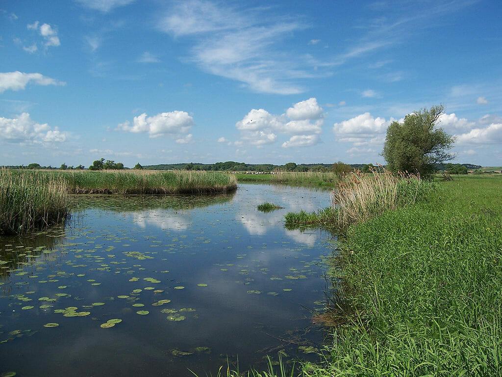 Ausflugsziele Brandenburg - Nationalpark Unteres Odertal